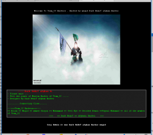 Screenshot of the hacked 11112018 web site